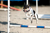 Agility at Debs - Project and More